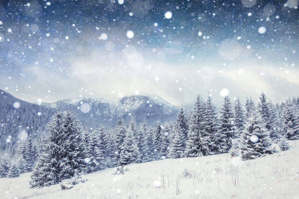 starry sky in winter snowy night. Carpathians, Ukraine, Europe