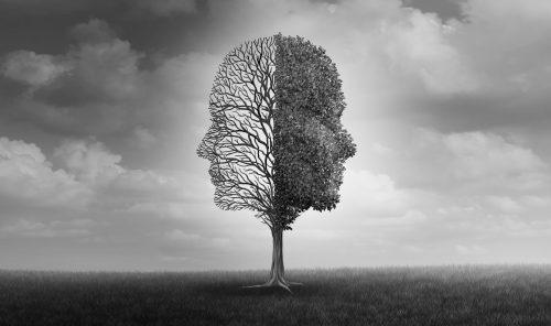 Webinar: Bipolar Disorder: Integrative Treatment Strategies @ Online Webinar
